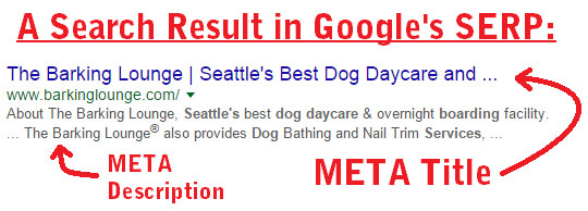 Google Search Result, META Title and Description Explained