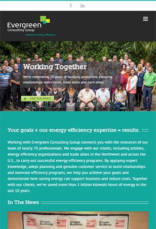 Evergreen Efficiency WordPress website tablet screenshot