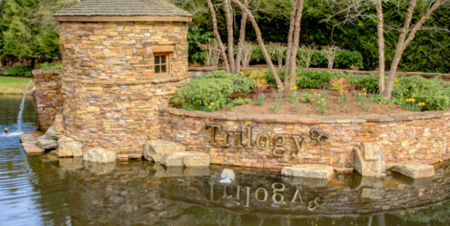 "Water feature with an island made of stone, a sign reading ""Triology"" and some daffodils."