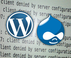 WordPress and Drupal work together on security updates
